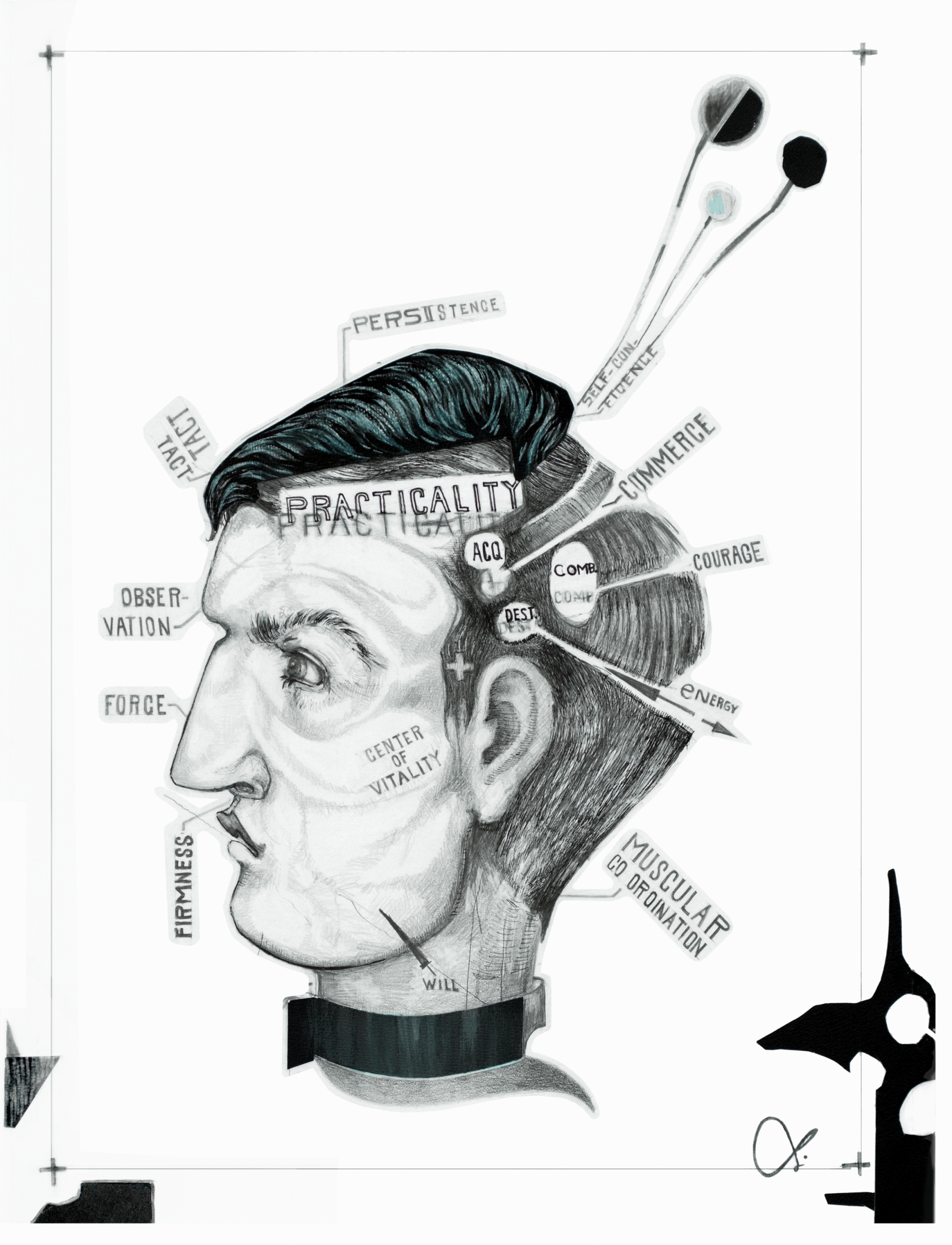 Print of Phrenology Original Art Drawing Lynsey Johnson